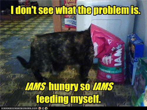 uh43048,1272972805,funny-pictures-cat-feeds-itself