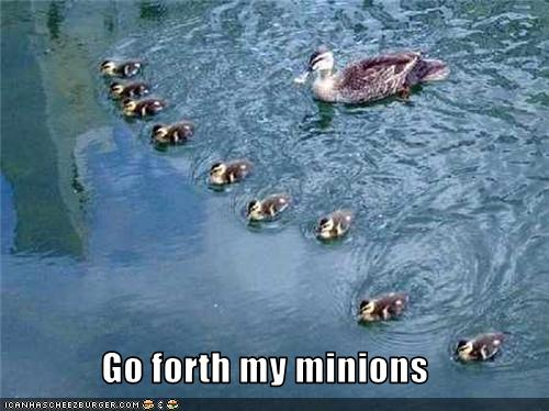 uh43048,1273474934,funny-pictures-duck-has-minions