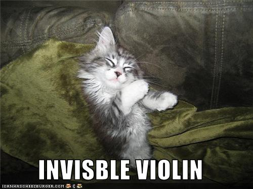 uh43048,1274276783,funny-pictures-cat-has-invisible-violin