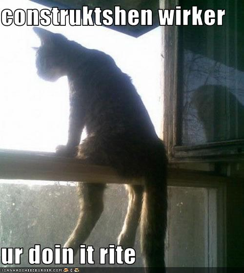 uh43048,1274276942,funny-pictures-cat-is-construction-worker