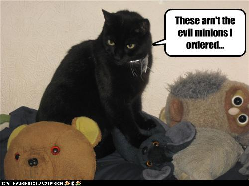 uh43048,1274452684,funny-pictures-cat-ordered-incorrect-minions