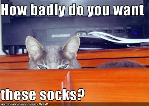 uh43048,1274786885,funny-pictures-cat-is-in-sock-drawer