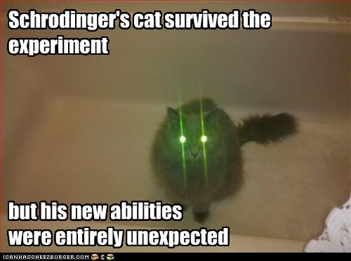uh43048,1275753957,funny-pictures-cat-survived-experiment