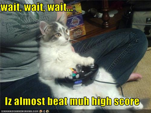 uh43048,1276091521,funny-pictures-cat-plays-video-game