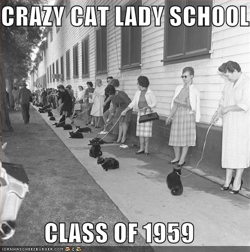 uh43048,1276596543,funny-pictures-crazy-cat-lady-school