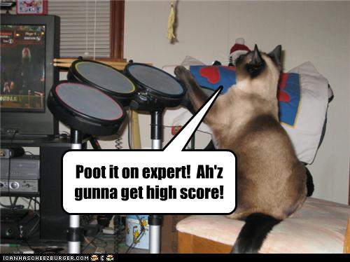uh43048,1276776795,funny-pictures-cat-plays-rock-band