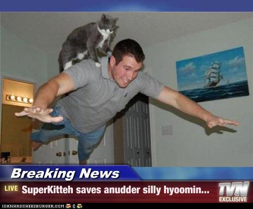 uh43048,1276776853,funny-pictures-cat-saves-human