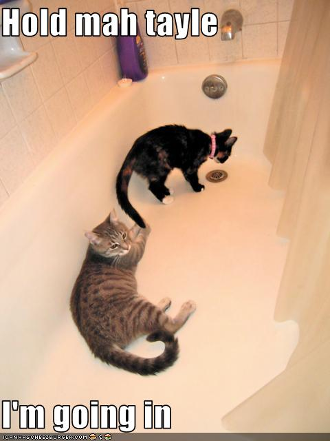 uh43048,1276777031,funny-pictures-cats-are-in-tub
