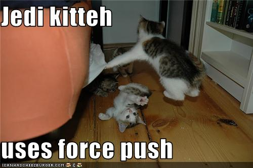 uh43048,1276777045,funny-pictures-kitten-is-jedi