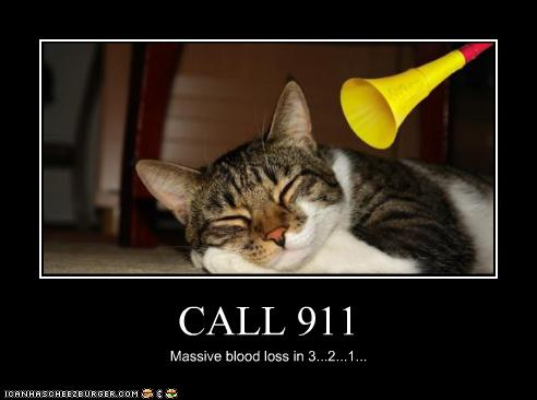 uh43048,1277329365,funny-pictures-cat-has-horn-by-ear