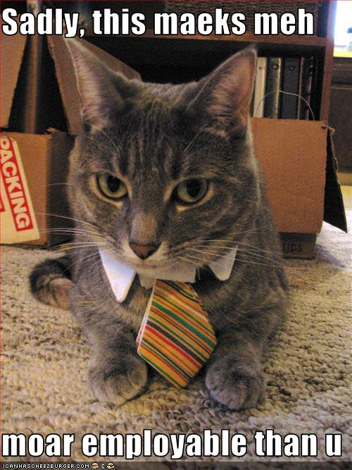 uh43048,1277379846,funny-pictures-cat-wears-a-tie
