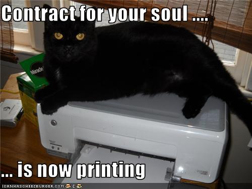 uh43048,1277795957,funny-pictures-cat-prints-a-contract