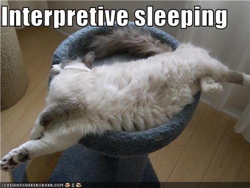 uh43048,1277796004,funny-pictures-cat-sleeps-strangely