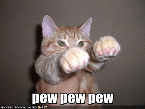uh43048,1277796171,funny-pictures-cat-goes-pew
