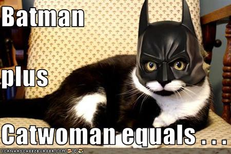 uh43048,1277796192,funny-pictures-cat-wears-batman-mask