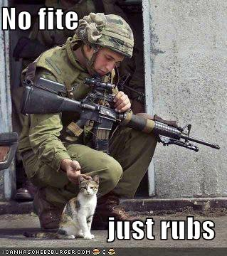 uh43048,1277893055,funny-pictures-soldier-and-cat-733603