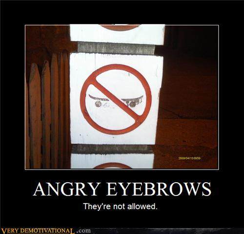 uh43048,1277915415,demotivational-posters-angry-eyebrows1