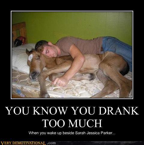uh43048,1277934882,demotivational-posters-you-know-you-drank-too-much