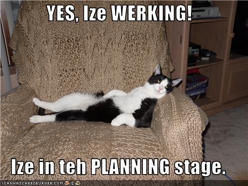 uh43048,1277967766,funny-pictures-cat-is-planning-to-work