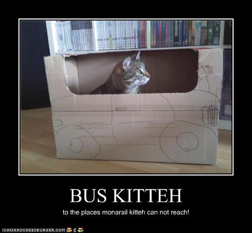 uh43048,1277967844,funny-pictures-cat-has-a-bus
