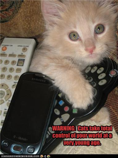 uh43048,1278328941,funny-pictures-kitten-has-remote