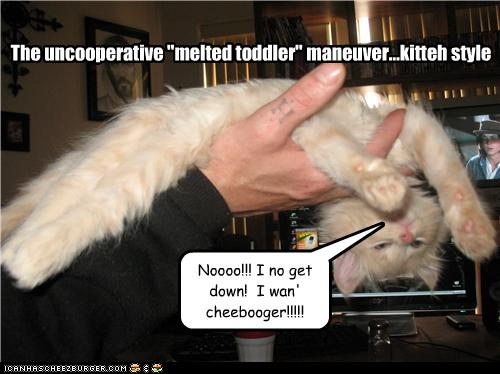 uh43048,1278329053,funny-pictures-kitten-is-uncooperative