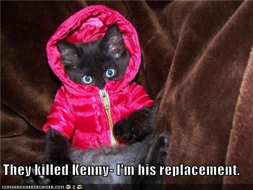 uh43048,1279000772,funny-pictures-kitten-wears-parka