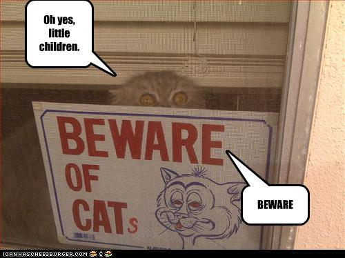 uh43048,1280312650,funny-pictures-cat-is-behind-a-sign