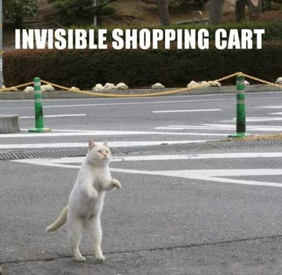 uh43048,1281960075,invisible shopping cart 410