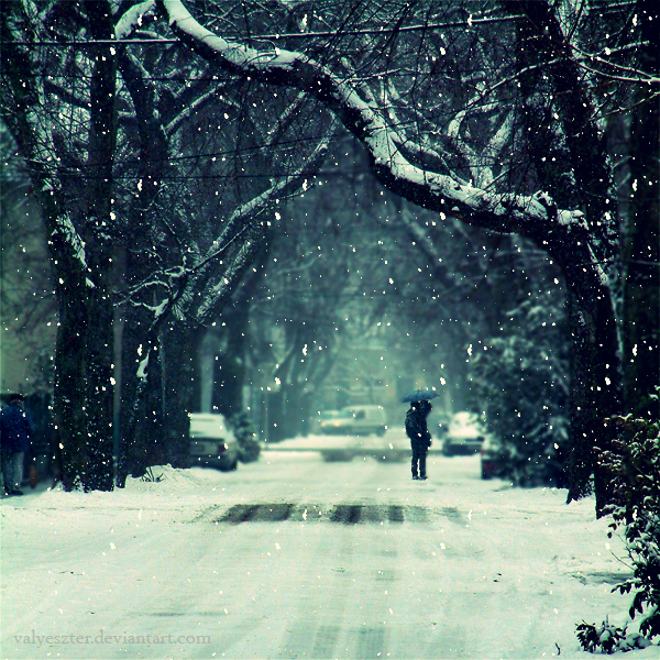uh43048,1284753513,winter memorie by valyeszter