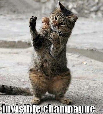 uh43048,1285313132,invisible-champagne-cat