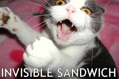 uh43048,1285313132,invisible-sandwich-cat