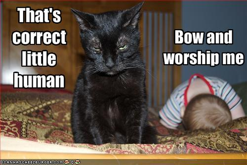uh43048,1289247114,funny-pictures-cat-demands-that-baby-worship-him