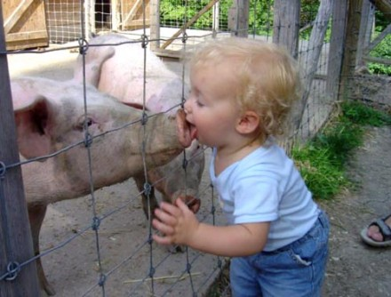 uh43048,1290688298,cute-baby-boy-kiss-pig-440x334