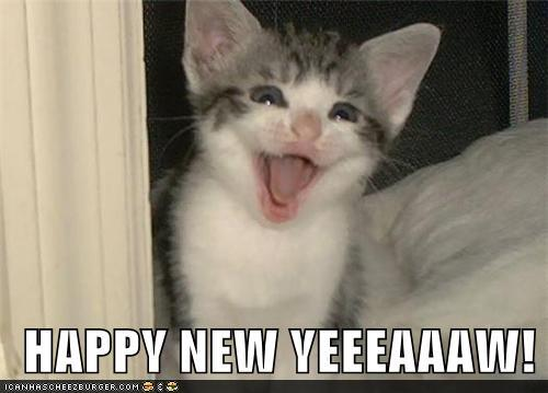 uh43048,1293966427,funny-pictures-happy-new-yeeeaaaw