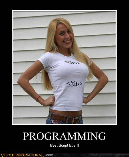 uh43048,1295803660,demotivational-posters-programming