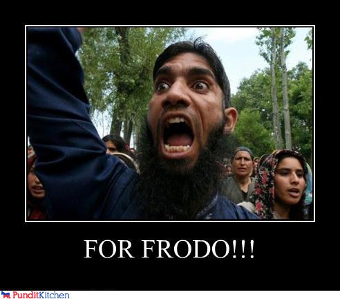 uh43048,1296260049,political-pictures-protester-for-frodo