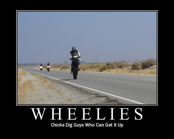 uh60450,1290107545,wheelie