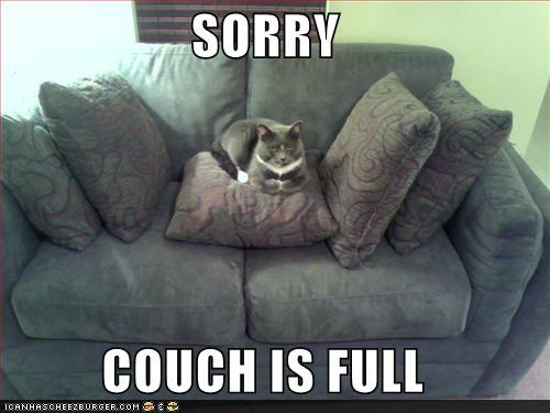 /dateien/vo68797,1294951840,funny-pictures-couch-is-full