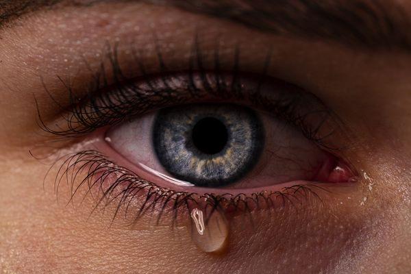 Auge Lustig