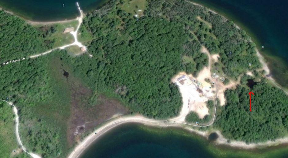 oak island aktuell 2019