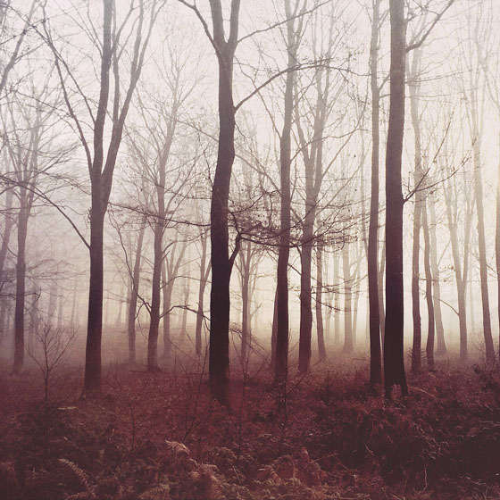 Moody-Landscape-iPhone-Photos-31