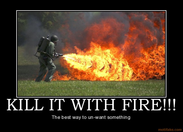 kill it with fire demotivational poster