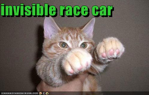 funny-pictures-cat-drives-an-invisible-r