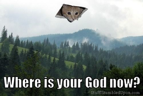 where-is-your-god-now-cat-cats-meme-kitt