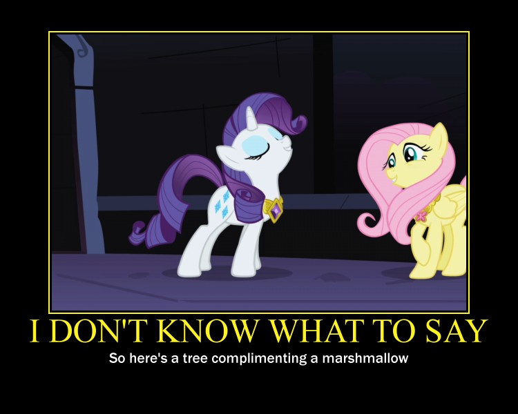 rarity and fluttershy demotivational by