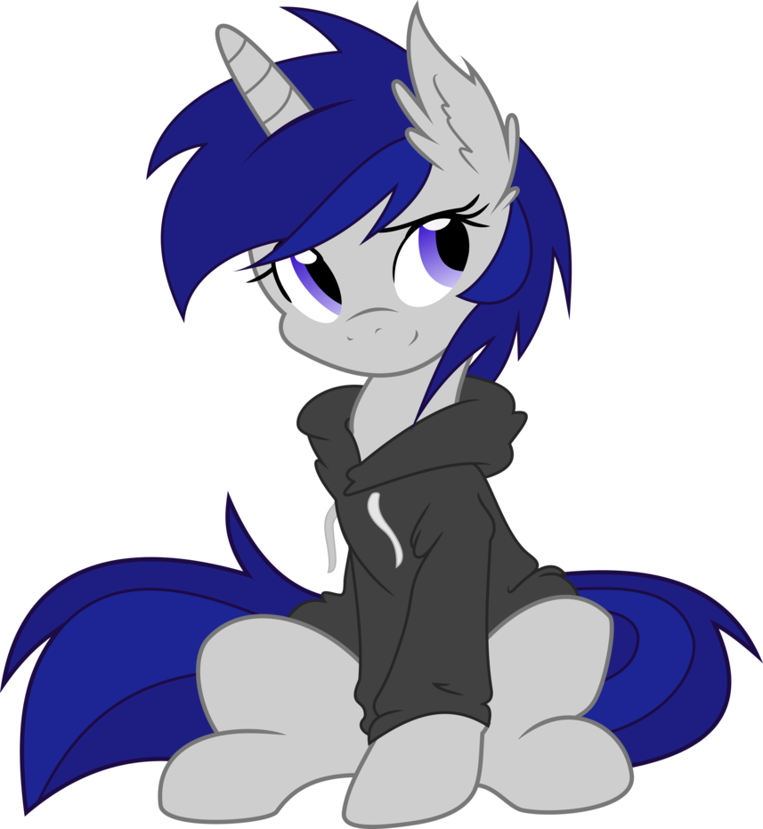 sky in a hoodie    mlp vector  by doctor