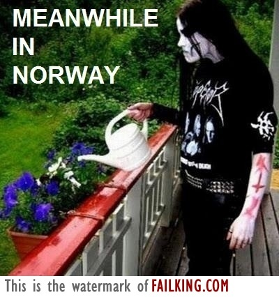 4207-meanwhile-in-norway f