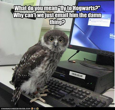 funny-owl-image-07