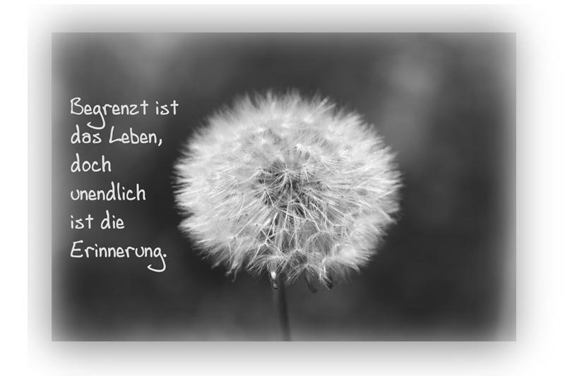 Zitate Trauer Nach Krankheit | deutsch sprechen